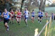 Cross chantrerie 2014